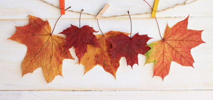 listy-jesen-dekoracia-nestandard1